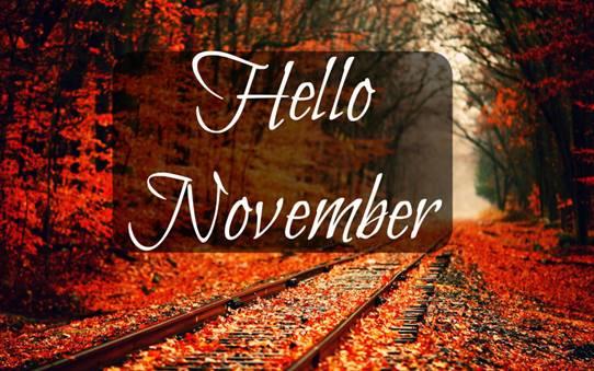 Bijzondere gebeurtenissen in November !